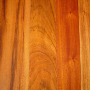 tigerwood_large_web