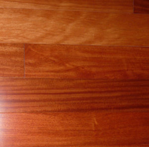 Burmese Ironwood Web Large