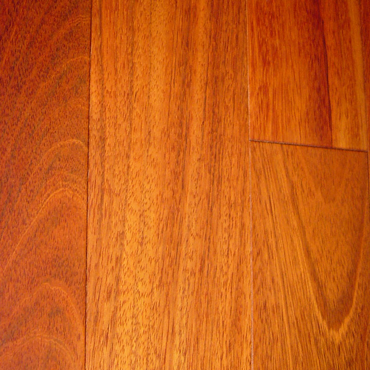 jatoba_large_web1